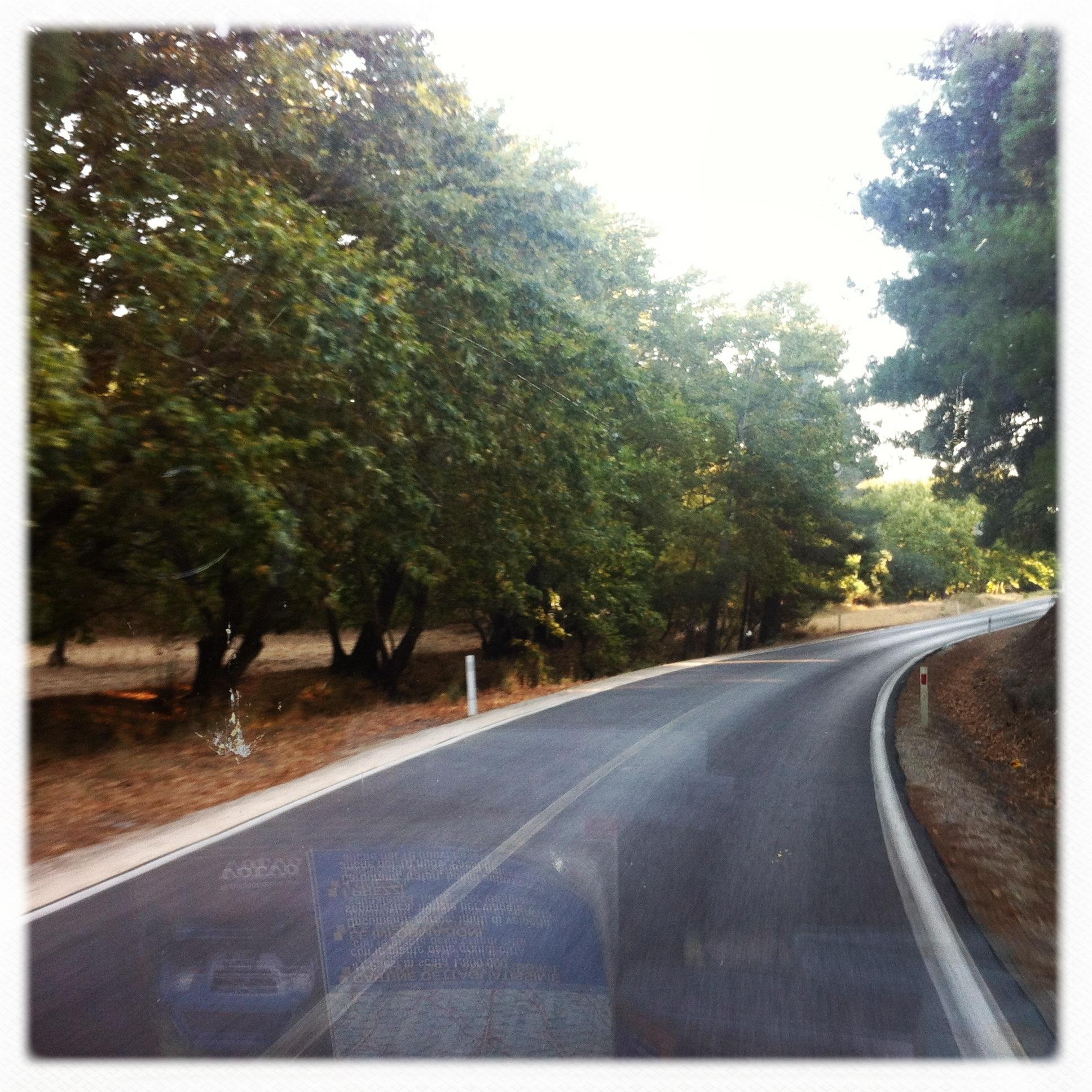 Tra i boschi della penisola di Gallipoli